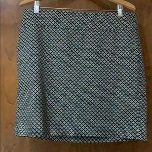 Ann Taylor Skirt 12